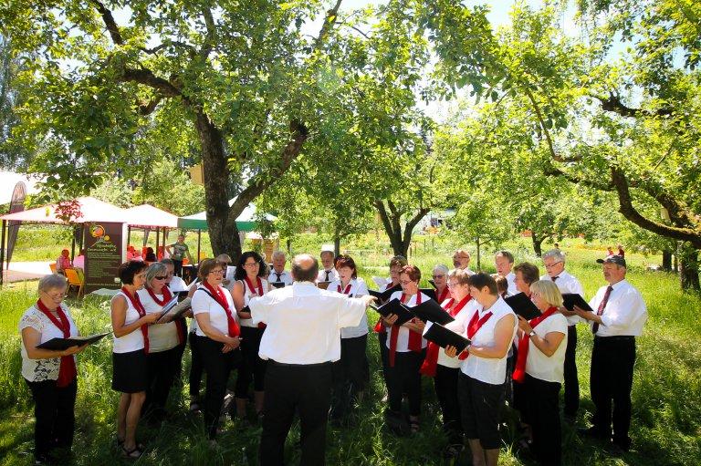 Chorfest in der Streuobstwiese am Klingenweiherpark