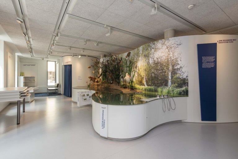 Museum FLUVIUS - Fluss und Teich Ausstellungsbereich